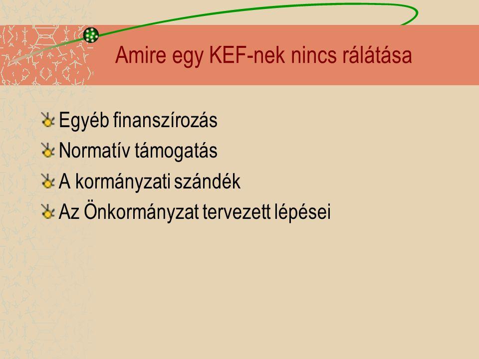Amire egy KEF-nek nincs rálátása Egyéb finanszírozás Normatív támogatás A kormányzati szándék Az Önkormányzat tervezett lépései