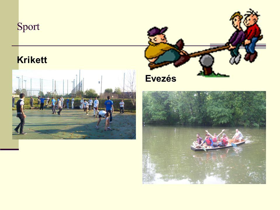 Sport Krikett Evezés