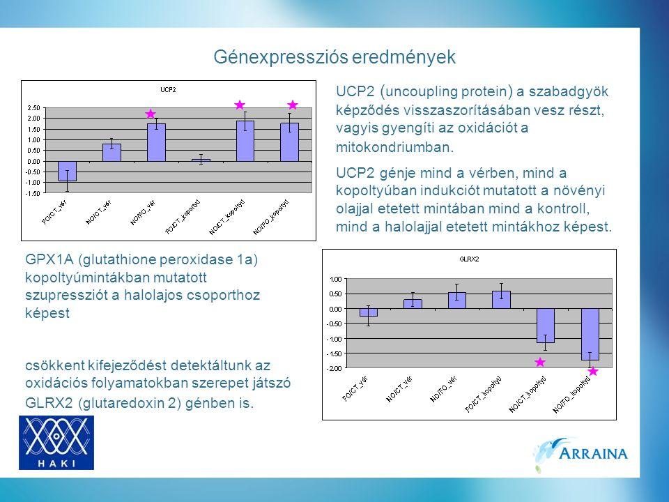 Génexpressziós eredmények UCP2 génje mind a vérben, mind a kopoltyúban indukciót mutatott a növényi olajjal etetett mintában mind a kontroll, mind a halolajjal etetett mintákhoz képest.