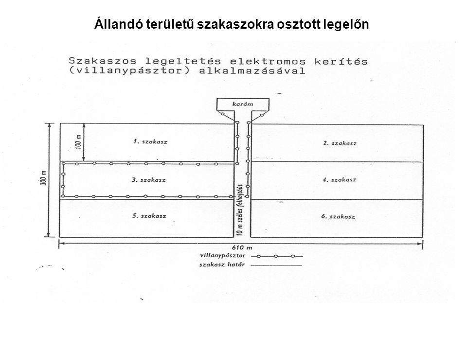Állandó területű szakaszokra osztott legelőn