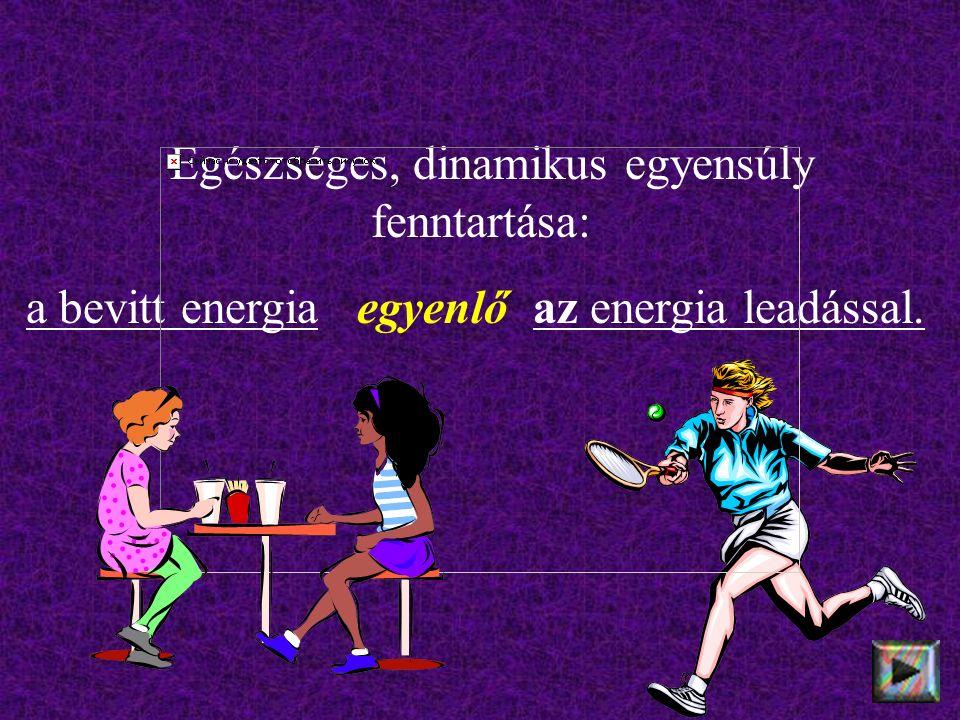 Egészséges, dinamikus egyensúly fenntartása: a bevitt energia egyenlő az energia leadással.