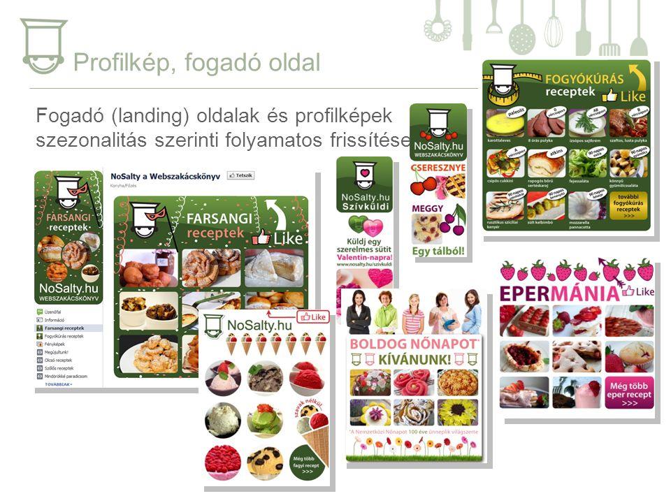 Profilkép, fogadó oldal Fogadó (landing) oldalak és profilképek szezonalitás szerinti folyamatos frissítése.