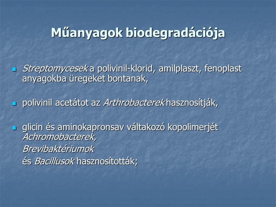 Műanyagok biodegradációja Streptomycesek a polivinil-klorid, amilplaszt, fenoplast anyagokba üregeket bontanak, Streptomycesek a polivinil-klorid, amilplaszt, fenoplast anyagokba üregeket bontanak, polivinil acetátot az Arthrobacterek hasznosítják, polivinil acetátot az Arthrobacterek hasznosítják, glicin és aminokapronsav váltakozó kopolimerjét Achromobacterek, glicin és aminokapronsav váltakozó kopolimerjét Achromobacterek,Brevibaktériumok és Bacillusok hasznosították;