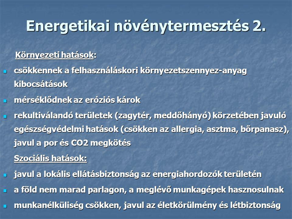 Energetikai növénytermesztés 2.