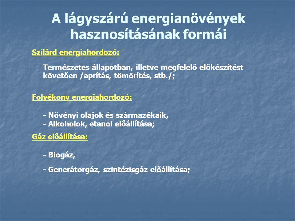 A lágyszárú energianövények hasznosításának formái Szilárd energiahordozó: Természetes állapotban, illetve megfelelő előkészítést követően /aprítás, tömörítés, stb./; Folyékony energiahordozó: - Növényi olajok és származékaik, - Alkoholok, etanol előállítása; Gáz előállítása: - Biogáz, - Generátorgáz, szintézisgáz előállítása;