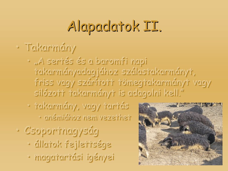 Alapadatok II.