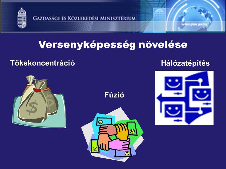 Versenyképesség növelése Fúzió Tőkekoncentráció Hálózatépítés