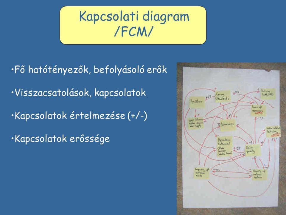 Kapcsolati diagram /FCM/ Fő hatótényezők, befolyásoló erők Visszacsatolások, kapcsolatok Kapcsolatok értelmezése (+/-) Kapcsolatok erőssége