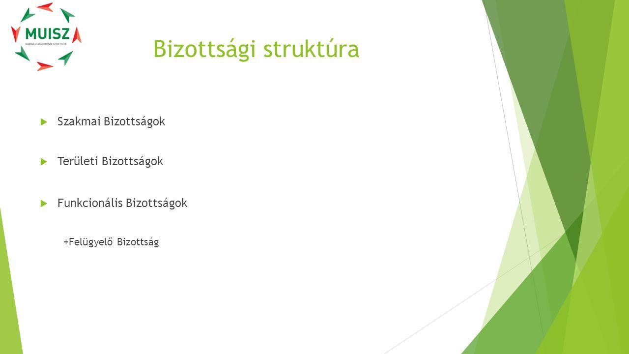 Bizottsági struktúra  Szakmai Bizottságok  Területi Bizottságok  Funkcionális Bizottságok +Felügyelő Bizottság