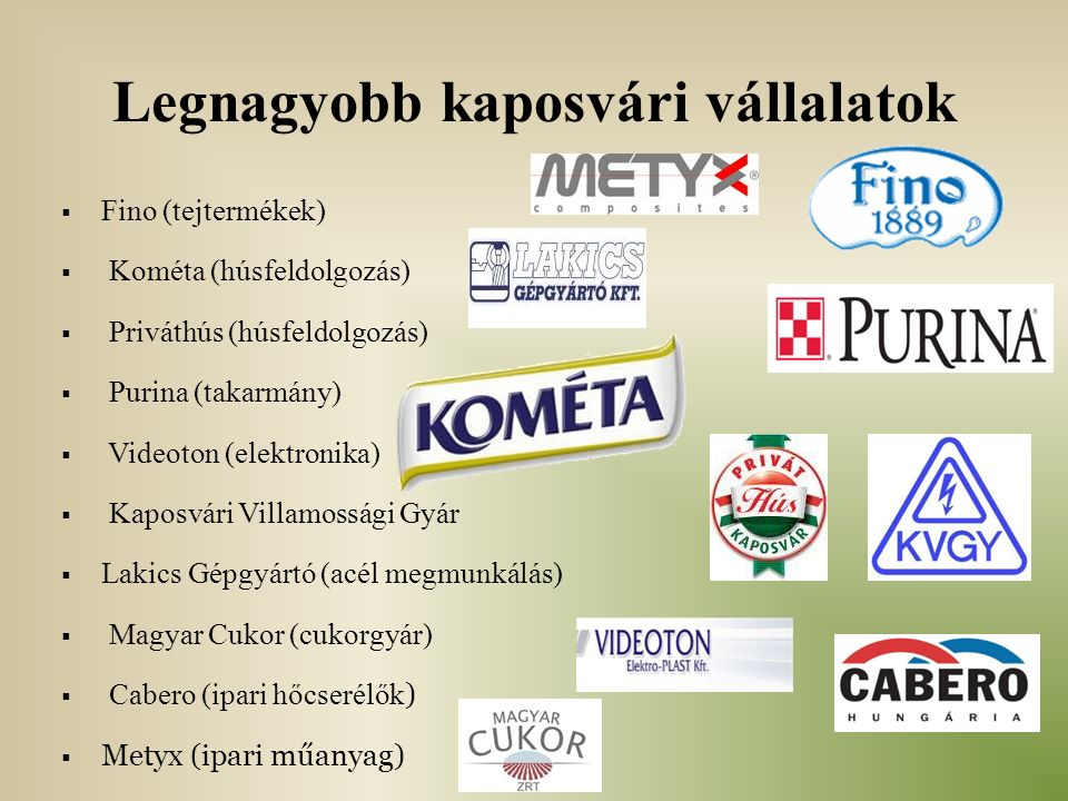 Legnagyobb kaposvári vállalatok  Fino (tejtermékek)  Kométa (húsfeldolgozás)  Priváthús (húsfeldolgozás)  Purina (takarmány)  Videoton (elektronika)  Kaposvári Villamossági Gyár  Lakics Gépgyártó (acél megmunkálás)  Magyar Cukor (cukorgyár)  Cabero (ipari hőcserélők )  Metyx (ipari műanyag)