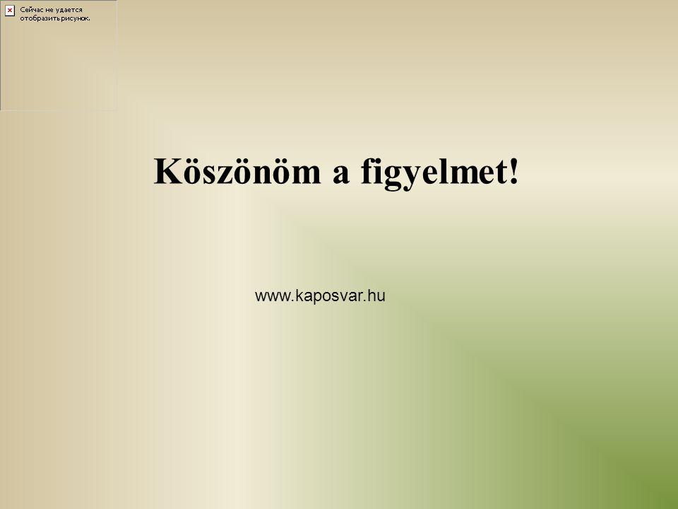 Köszönöm a figyelmet! www.kaposvar.hu