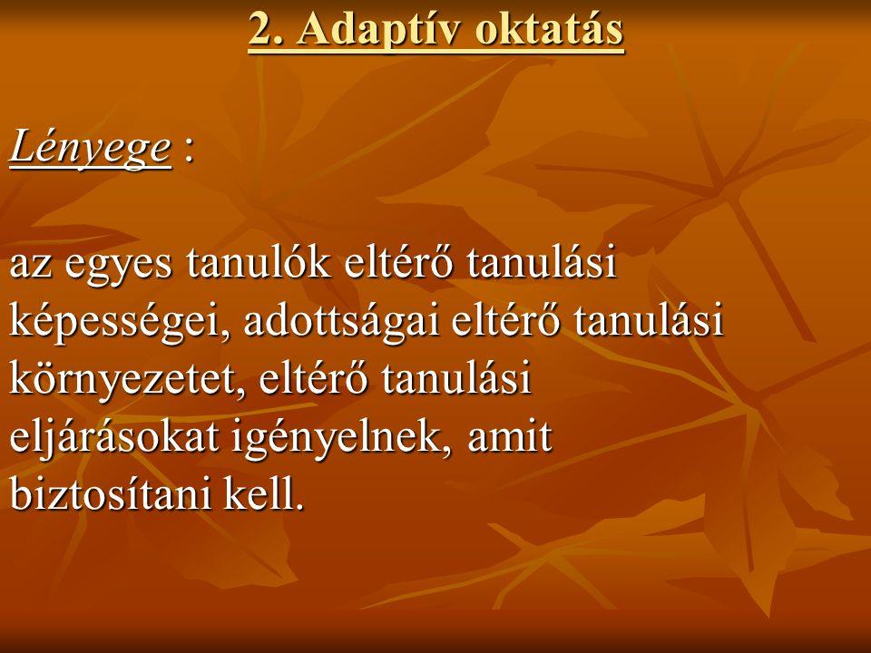 2. Adaptív oktatás Lényege : az egyes tanulók eltérő tanulási képességei, adottságai eltérő tanulási környezetet, eltérő tanulási eljárásokat igényeln