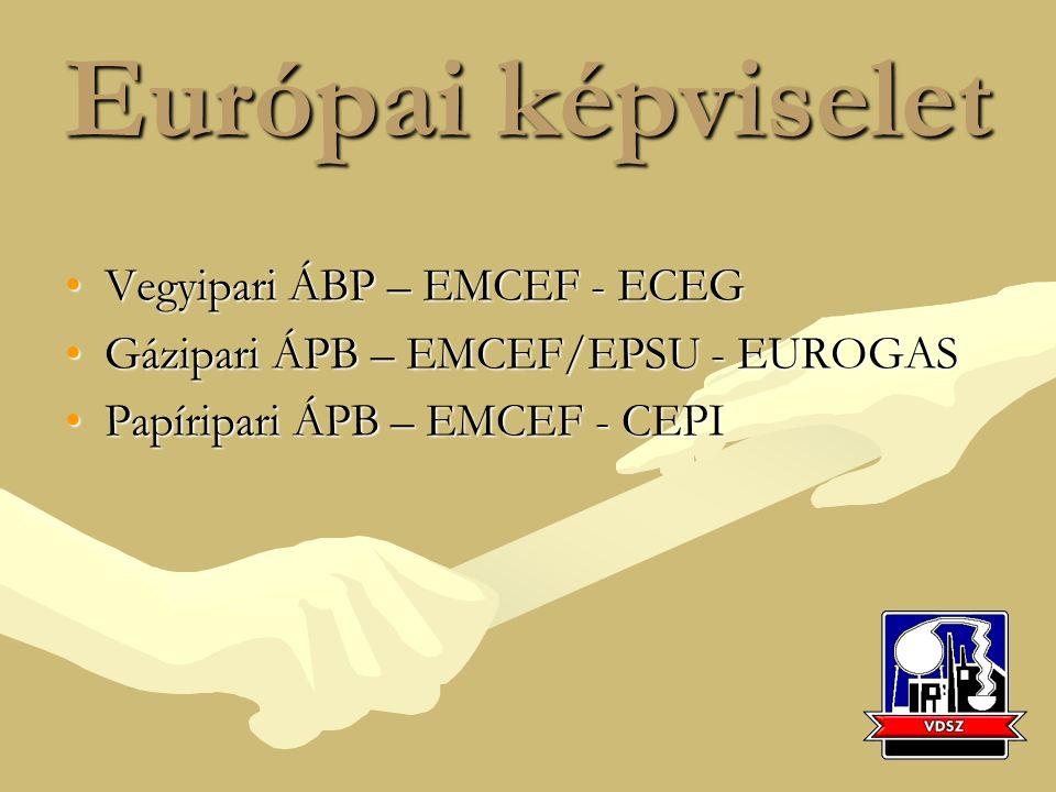 Európai képviselet Vegyipari ÁBP – EMCEF - ECEGVegyipari ÁBP – EMCEF - ECEG Gázipari ÁPB – EMCEF/EPSU - EUROGASGázipari ÁPB – EMCEF/EPSU - EUROGAS Papíripari ÁPB – EMCEF - CEPIPapíripari ÁPB – EMCEF - CEPI