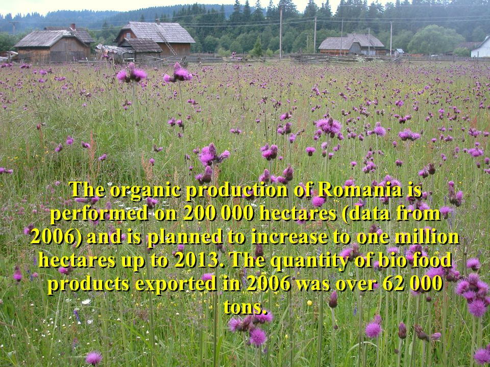 The organic production of Romania is performed on 200 000 hectares (data from 2006) and is planned to increase to one million hectares up to 2013.