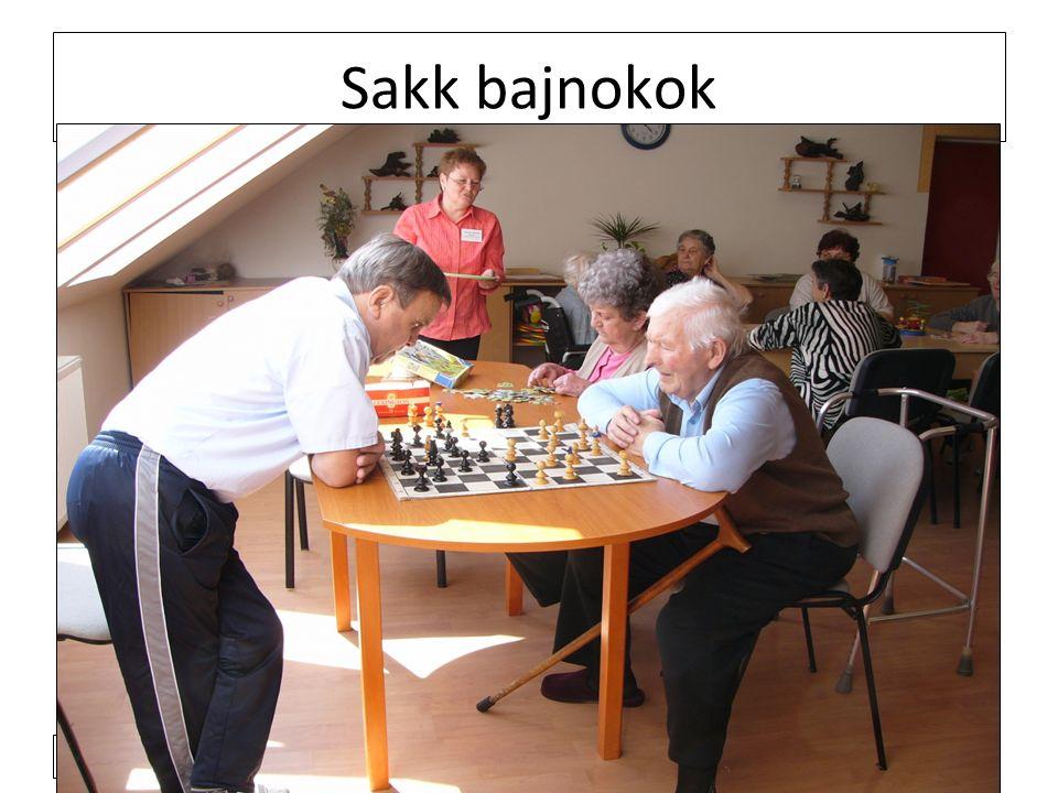 2011. 4. 4. Sakk bajnokok