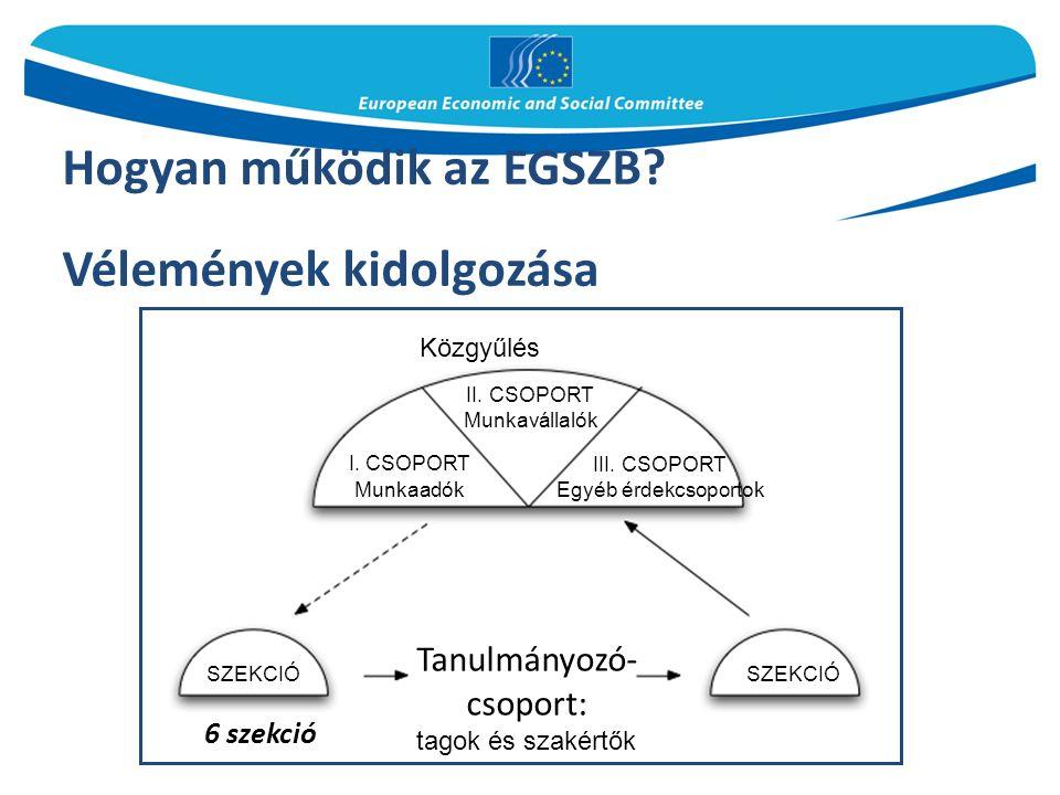 Hogyan működik az EGSZB. Vélemények kidolgozása 6 szekció Közgyűlés II.