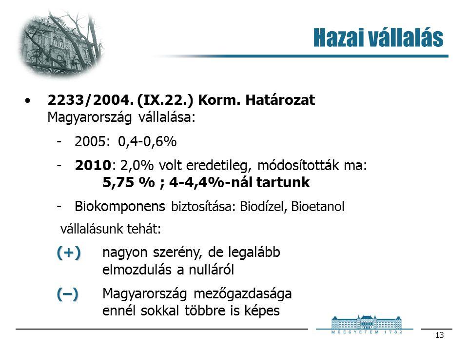 13 Hazai vállalás 2233/2004. (IX.22.) Korm.