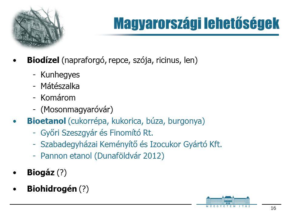 16 Magyarországi lehetőségek Biodízel (napraforgó, repce, szója, ricinus, len) Kunhegyes Mátészalka Komárom (Mosonmagyaróvár) Bioetanol (cukorrépa, kukorica, búza, burgonya) Győri Szeszgyár és Finomító Rt.