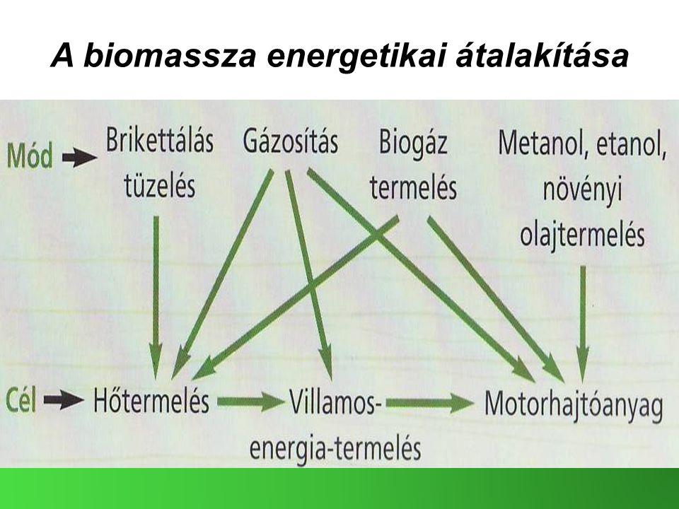 A biomassza energetikai átalakítása