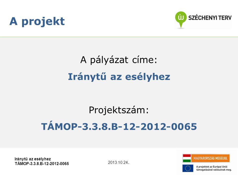 A pályázat címe: Iránytű az esélyhez Projektszám: TÁMOP-3.3.8.B-12-2012-0065 A projekt Iránytű az esélyhez TÁMOP-3.3.8.B-12-2012-0065 2013.10.24.