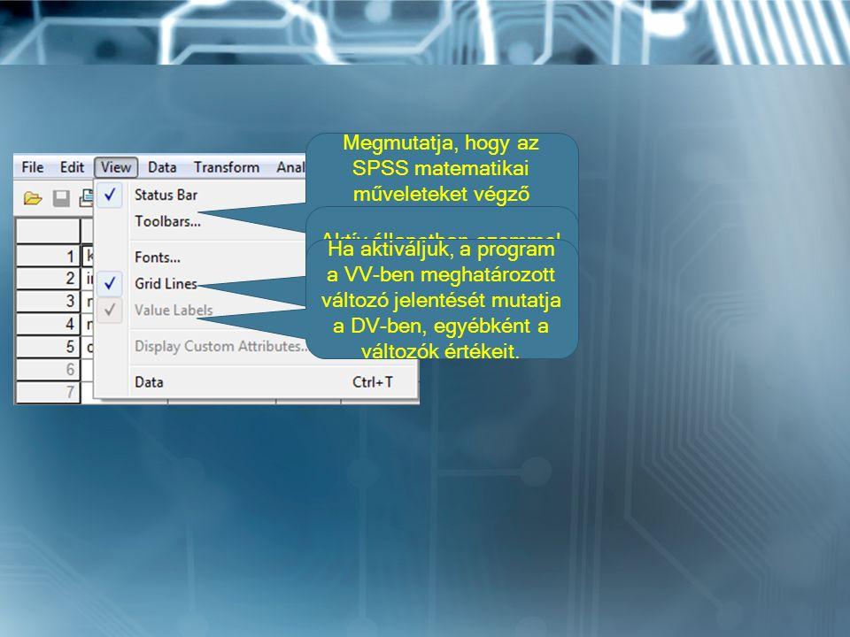 Megmutatja, hogy az SPSS matematikai műveleteket végző egysége (processor) dolgozik-e.