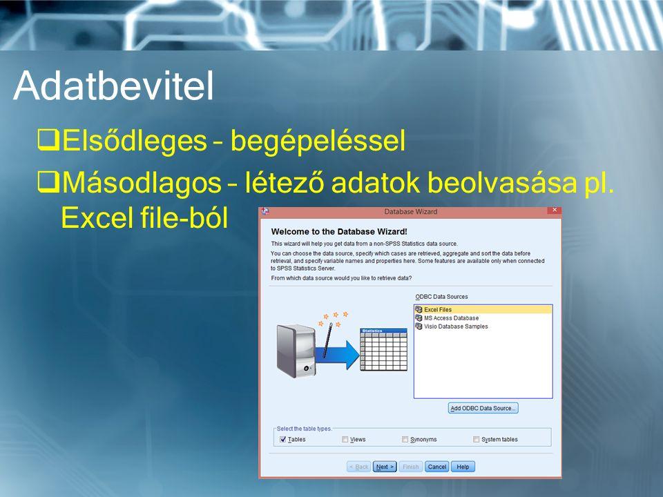 Adatbevitel  Elsődleges – begépeléssel  Másodlagos – létező adatok beolvasása pl. Excel file-ból