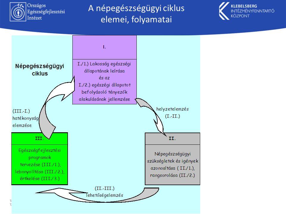 A népegészségügyi ciklus elemei, folyamatai