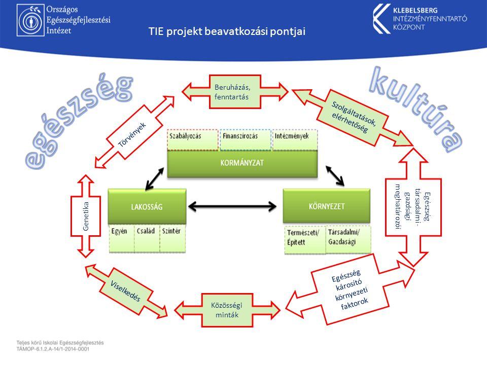Törvények Beruházás, fenntartás Közösségi minták Viselkedés Genetika Egészség károsító környezeti faktorok Egészség társadalmi- gazdsági meghatározói