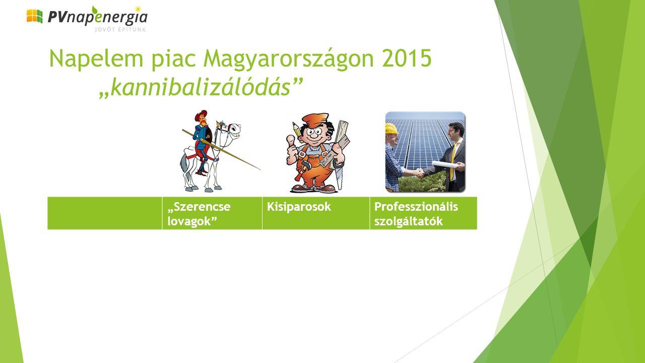"""Napelem piac Magyarországon 2015 """"kannibalizálódás """"Szerencse lovagok KisiparosokProfesszionális szolgáltatók"""