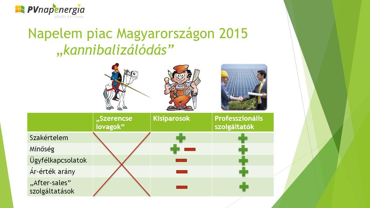 """Napelem piac Magyarországon 2015 """"kannibalizálódás """"Szerencse lovagok KisiparosokProfesszionális szolgáltatók Szakértelem Minőség Ügyfélkapcsolatok Ár-érték arány """"After-sales szolgáltatások"""