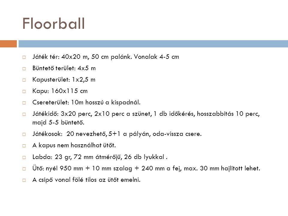 Floorball  Játék tér: 40x20 m, 50 cm palánk. Vonalak 4-5 cm  Büntető terület: 4x5 m  Kapusterület: 1x2,5 m  Kapu: 160x115 cm  Csereterület: 10m h