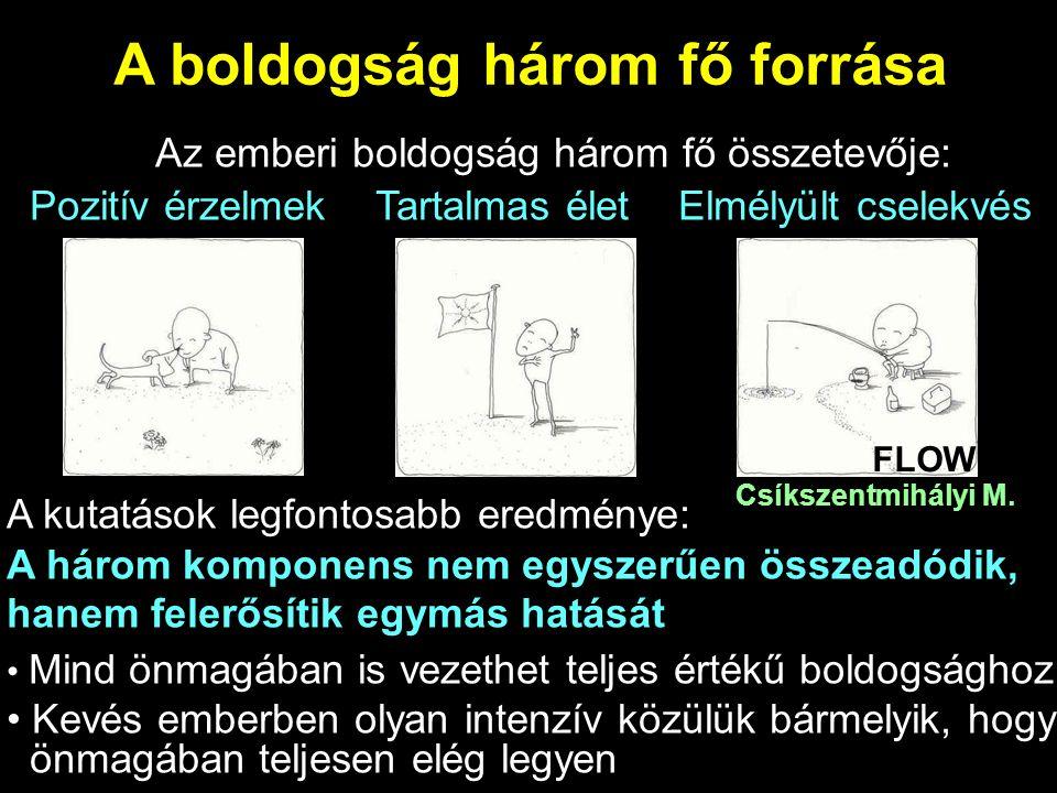 A boldogság három fő forrása Az emberi boldogság három fő összetevője: Pozitív érzelmek Tartalmas élet Elmélyült cselekvés A kutatások legfontosabb eredménye: A három komponens nem egyszerűen összeadódik, hanem felerősítik egymás hatását Mind önmagában is vezethet teljes értékű boldogsághoz Kevés emberben olyan intenzív közülük bármelyik, hogy önmagában teljesen elég legyen FLOW Csíkszentmihályi M.