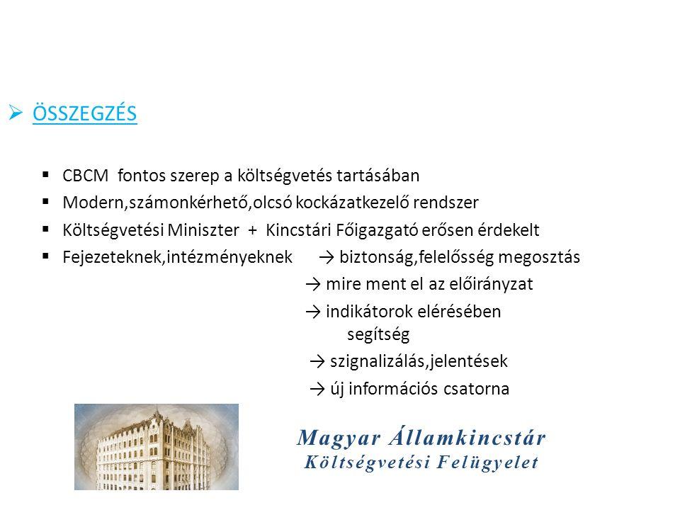 Magyar Államkincstár Költségvetési Felügyelet  ÖSSZEGZÉS  CBCM fontos szerep a költségvetés tartásában  Modern,számonkérhető,olcsó kockázatkezelő rendszer  Költségvetési Miniszter + Kincstári Főigazgató erősen érdekelt  Fejezeteknek,intézményeknek → biztonság,felelősség megosztás → mire ment el az előirányzat → indikátorok elérésében segítség → szignalizálás,jelentések → új információs csatorna