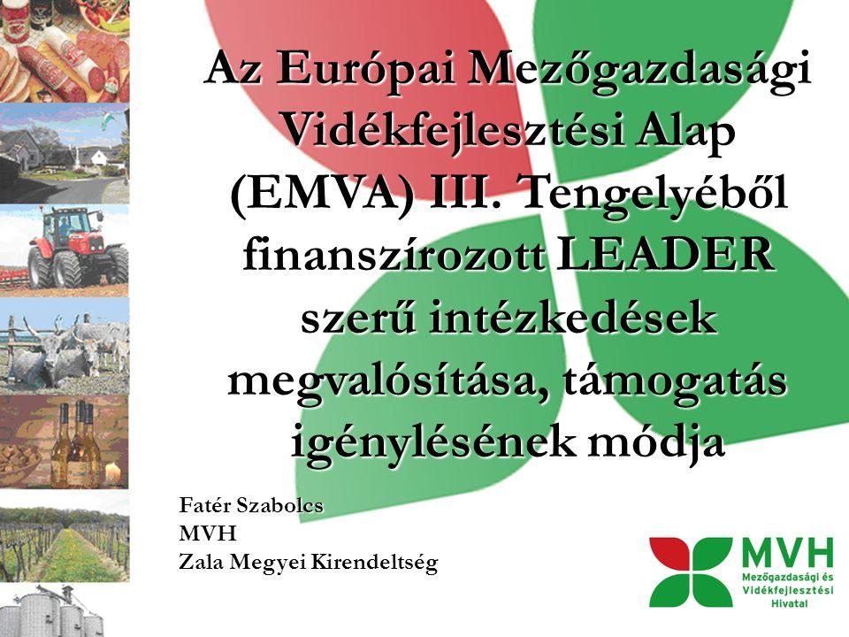 Az Európai Mezőgazdasági Vidékfejlesztési Alap (EMVA) III. Tengelyéből finanszírozott LEADER szerű intézkedések megvalósítása, támogatás igénylésének