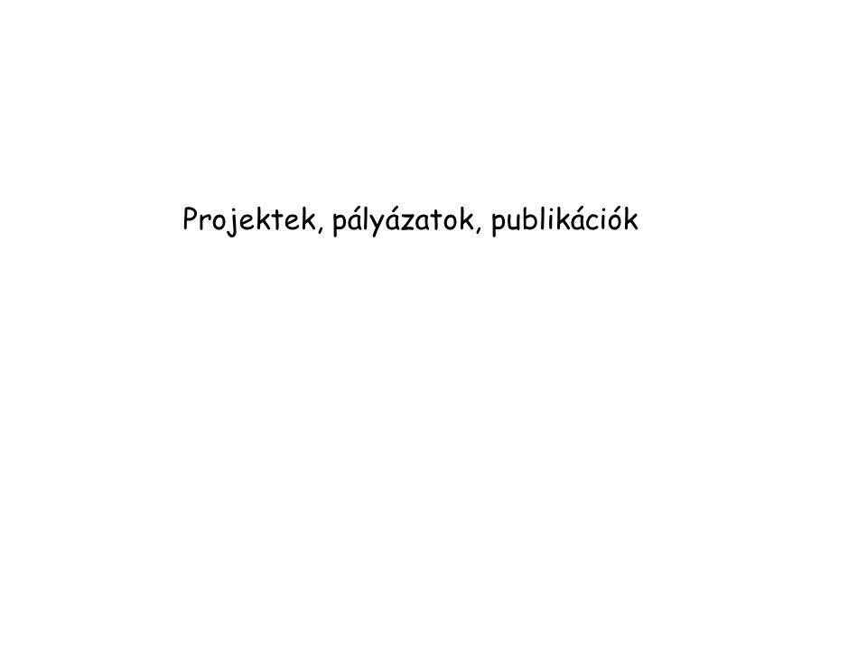 Projektek, pályázatok, publikációk