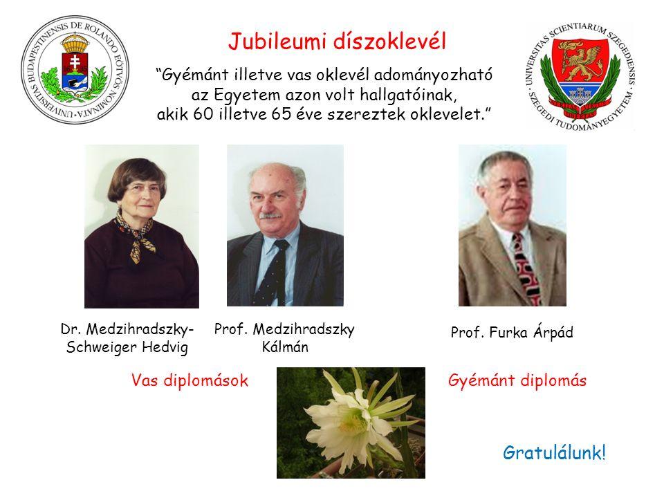 Dr. Medzihradszky- Schweiger Hedvig Prof.