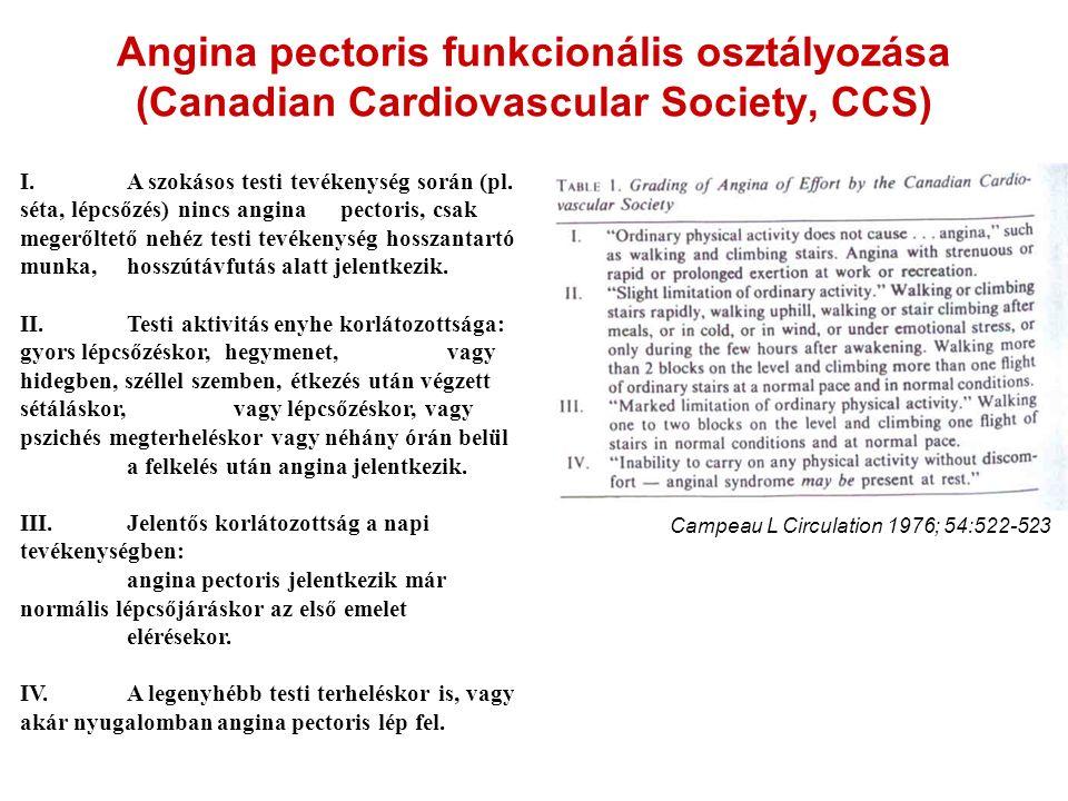 Angina pectoris funkcionális osztályozása (Canadian Cardiovascular Society, CCS) I.A szokásos testi tevékenység során (pl. séta, lépcsőzés) nincs angi