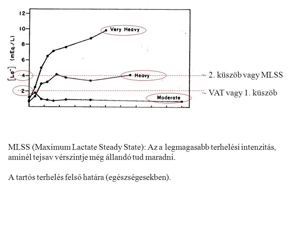 ~ VAT vagy 1. küszöb ~ 2. küszöb vagy MLSS MLSS (Maximum Lactate Steady State): Az a legmagasabb terhelési intenzitás, aminél tejsav vérszintje még ál
