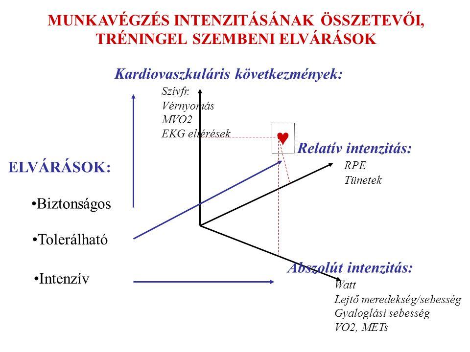 Abszolút intenzitás: Watt Lejtő meredekség/sebesség Gyaloglási sebesség VO2, METs Relatív intenzitás: RPE Tünetek Kardiovaszkuláris következmények: Szívfr.