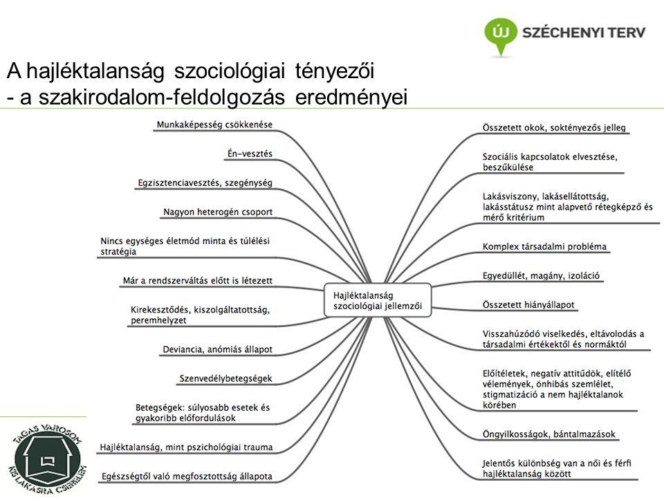 A hajléktalanság szociológiai tényezői - a szakirodalom-feldolgozás eredményei Dr.