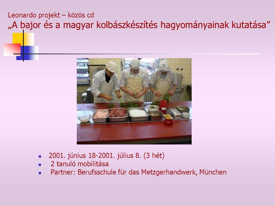 """Leonardo projekt – közös cd """"A bajor és a magyar kolbászkészítés hagyományainak kutatása"""" 2001. június 18-2001. július 8. (3 hét) 2 tanuló mobilitása"""