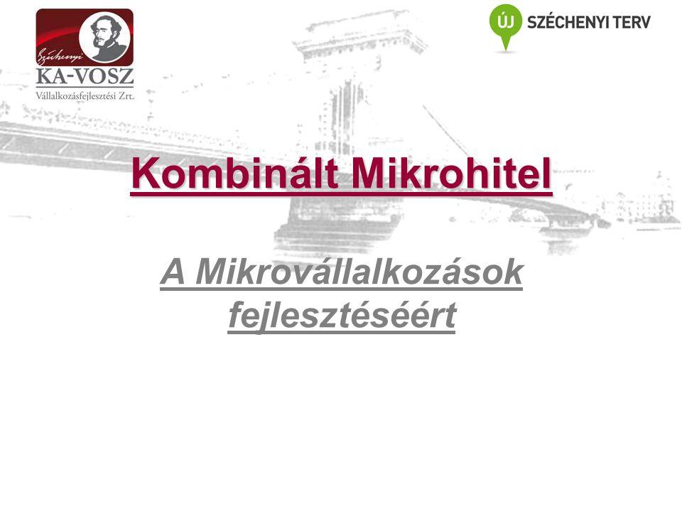 Kombinált Mikrohitel A Mikrovállalkozások fejlesztéséért