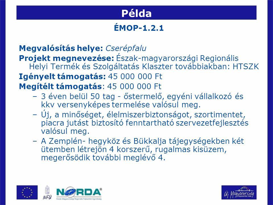 Példa ÉMOP-1.2.1 Megvalósítás helye: Cserépfalu Projekt megnevezése: Észak-magyarországi Regionális Helyi Termék és Szolgáltatás Klaszter továbbiakban: HTSZK Igényelt támogatás: 45 000 000 Ft Megítélt támogatás: 45 000 000 Ft –3 éven belül 50 tag - őstermelő, egyéni vállalkozó és kkv versenyképes termelése valósul meg.