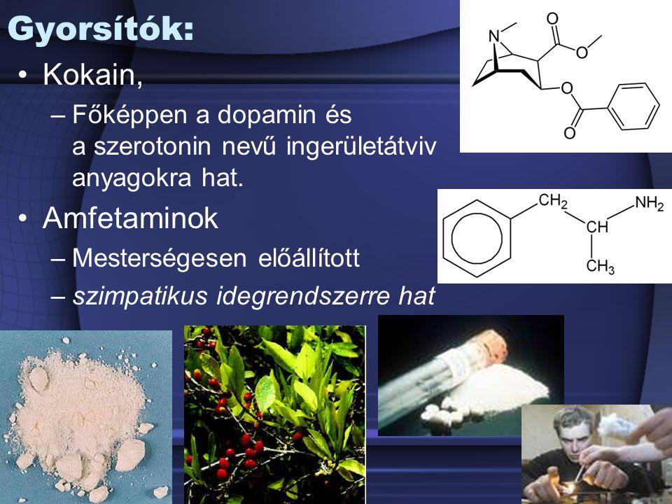 Gyorsítók: Kokain, –Főképpen a dopamin és a szerotonin nevű ingerületátviv anyagokra hat.