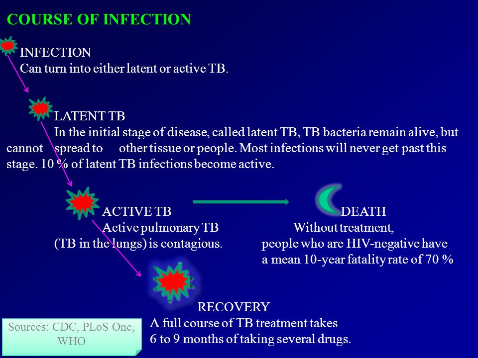 COURSE OF INFECTION INFECTION Can turn into either latent or active TB.