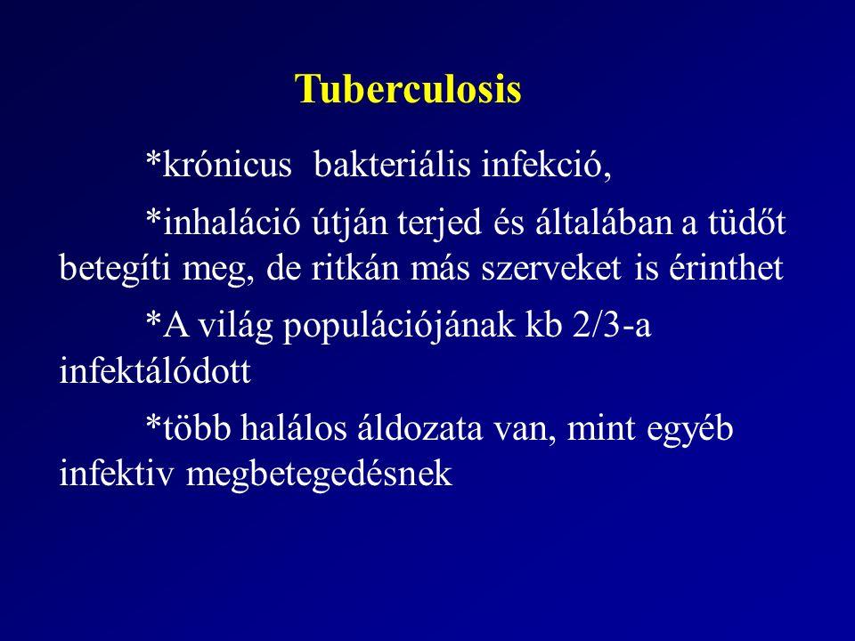 Tuberculosis *krónicus bakteriális infekció, *inhaláció útján terjed és általában a tüdőt betegíti meg, de ritkán más szerveket is érinthet *A világ populációjának kb 2/3-a infektálódott *több halálos áldozata van, mint egyéb infektiv megbetegedésnek