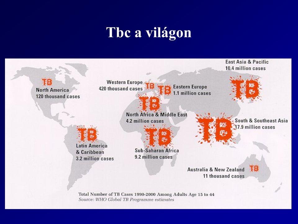 Epidemiológia Estimated WHO Regional TB statistics for 2011 RegionIncidencePrevalenceDeathsPopulation Africa2,300,0002,500,000220,000857,382,000 Americas260,000330,00021,000943,019,000 Eastern Mediterranean660,0001,000,00099,000608,628,000 Europe380,000500,00045,000899,500,000 South-East Asia3,500,0005,000,000480,0001,830,361,000 Western Pacific1,700,0002,500,000130,0001,808,797,000 Global Total8,800,00011,830,000995,0006,947,687,000