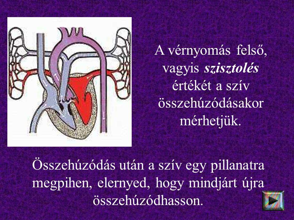 A vérnyomás felső, vagyis szisztolés értékét a szív összehúzódásakor mérhetjük.
