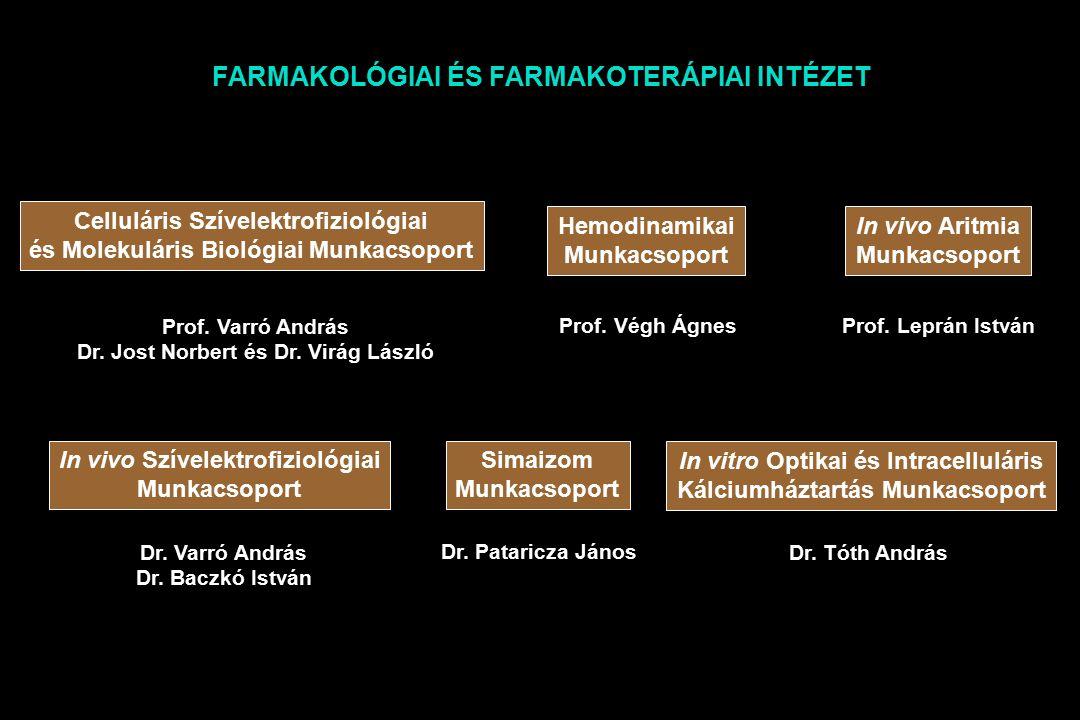 Celluláris Szívelektrofiziológiai és Molekuláris Biológiai Munkacsoport Hemodinamikai Munkacsoport In vivo Aritmia Munkacsoport Prof.