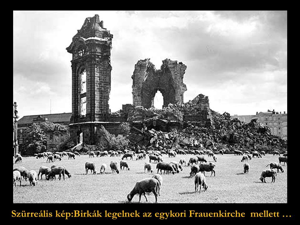 Drezda 1949-ben. Az újjáépítést a férfiak hiánya késlelteti.